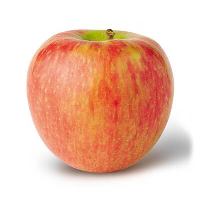 Pick your own honeycrisp apples