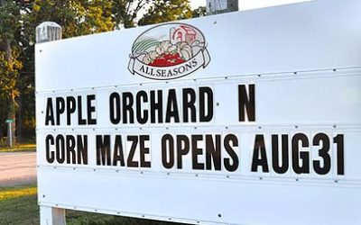 Apple Picking Season Starts Aug 31