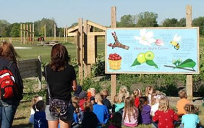 Field Trips at All Seasons Orchard